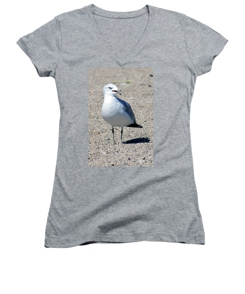 Women's V-Neck T-Shirt (Junior Cut) featuring the photograph Posing Gull by Debbie Hart