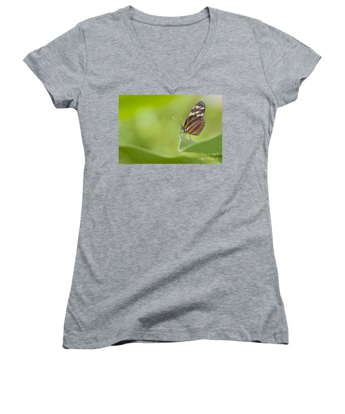 Women's V-Neck T-Shirt (Junior Cut) featuring the photograph Postman On A Leaf by Bryan Keil