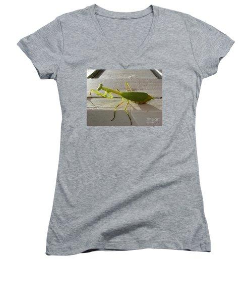 Praying Mantis Women's V-Neck