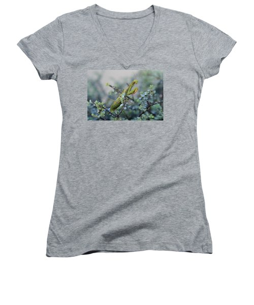 Praying Mantis Women's V-Neck T-Shirt