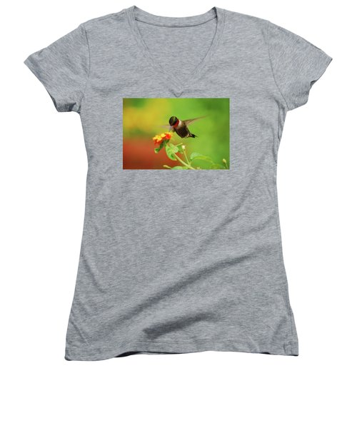 Pretty As A Picture Women's V-Neck T-Shirt (Junior Cut)