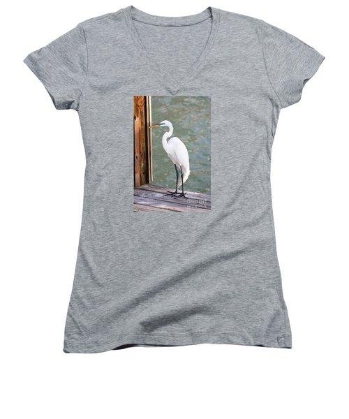 Pretty Great Egret Women's V-Neck T-Shirt (Junior Cut)