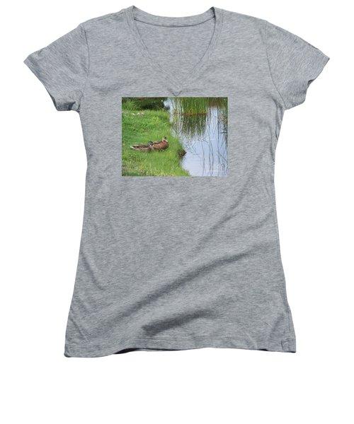 Mated Pair Of Ducks Women's V-Neck T-Shirt (Junior Cut) by Eunice Miller