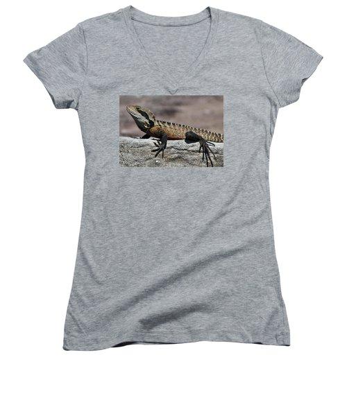 Women's V-Neck T-Shirt (Junior Cut) featuring the photograph Profile Of A Waterdragon by Miroslava Jurcik