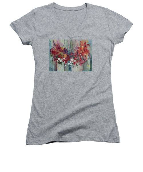 Profusion Women's V-Neck T-Shirt (Junior Cut) by Lee Beuther