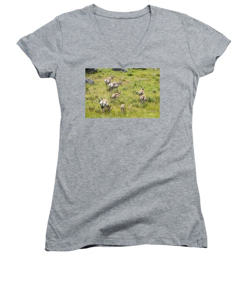 Women's V-Neck T-Shirt (Junior Cut) featuring the photograph Pronghorn Antelope In Lamar Valley by Belinda Greb