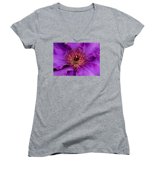 Women's V-Neck T-Shirt (Junior Cut) featuring the photograph Purple Clematis by Suzanne Stout