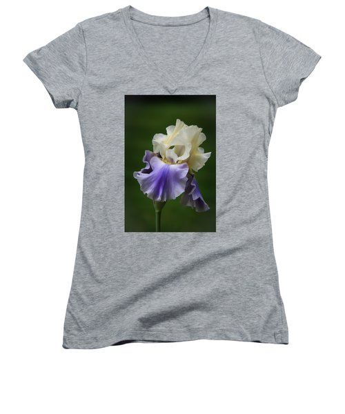Purple Cream Bearded Iris Women's V-Neck T-Shirt (Junior Cut) by Patti Deters