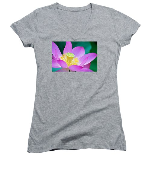 Purple Lotus Blossom Women's V-Neck (Athletic Fit)