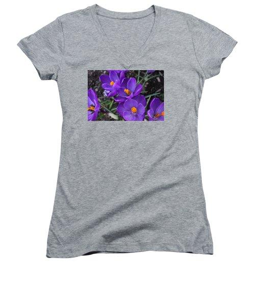 Women's V-Neck T-Shirt (Junior Cut) featuring the photograph Purple Passion by Judy Palkimas
