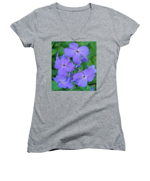 Women's V-Neck T-Shirt (Junior Cut) featuring the photograph Purple Passion by Sara  Raber