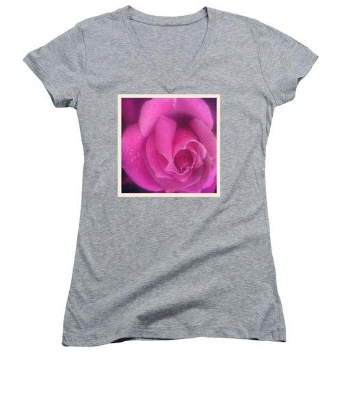 Purple Rose Confection Women's V-Neck T-Shirt