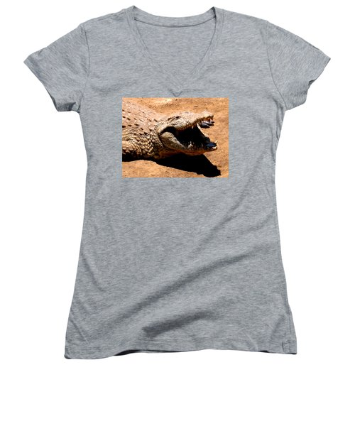 Put It Right Here Women's V-Neck T-Shirt (Junior Cut) by Jay Milo