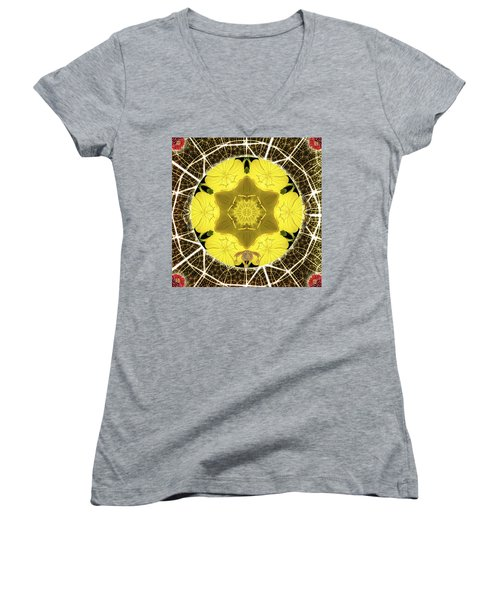 Queen Bee-nectar Of Life Women's V-Neck T-Shirt