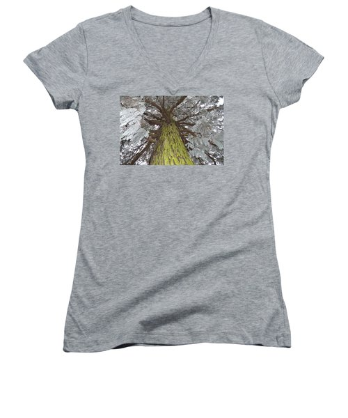 Women's V-Neck T-Shirt (Junior Cut) featuring the photograph Ready For Christmas by Felicia Tica