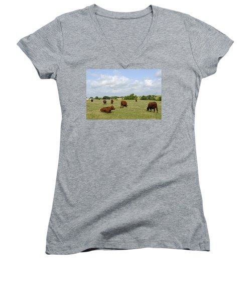 Women's V-Neck T-Shirt (Junior Cut) featuring the photograph Red Angus Cattle by Charles Beeler