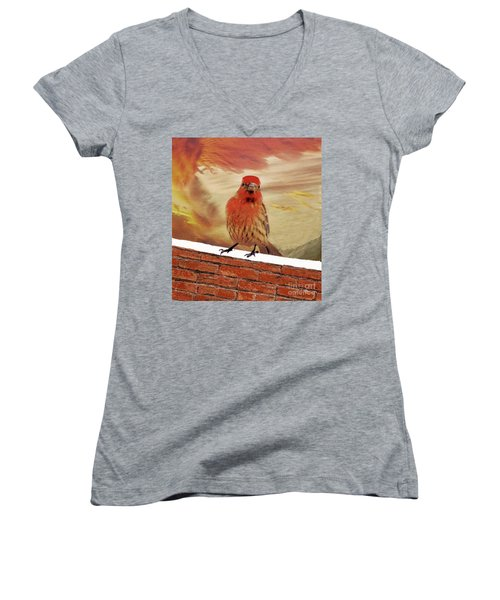 Red Finch On Red Brick Women's V-Neck T-Shirt (Junior Cut) by Janette Boyd