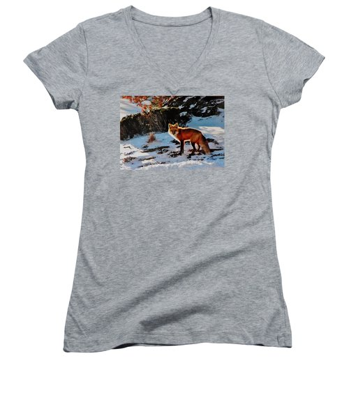 Women's V-Neck T-Shirt (Junior Cut) featuring the photograph Red Fox In Winter by Diane Alexander