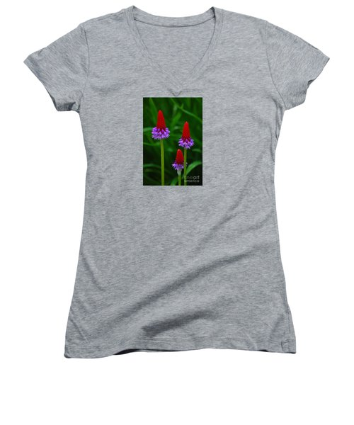 Red Hot Pokers Women's V-Neck T-Shirt (Junior Cut) by Cynthia Lagoudakis