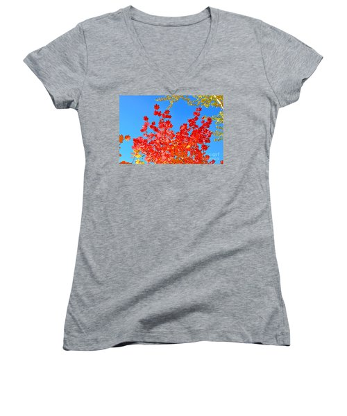 Women's V-Neck T-Shirt (Junior Cut) featuring the photograph Red Leaves by David Lawson