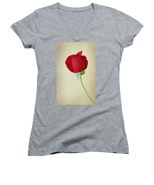 Red Rose On White Women's V-Neck T-Shirt (Junior Cut) by Sandy Keeton