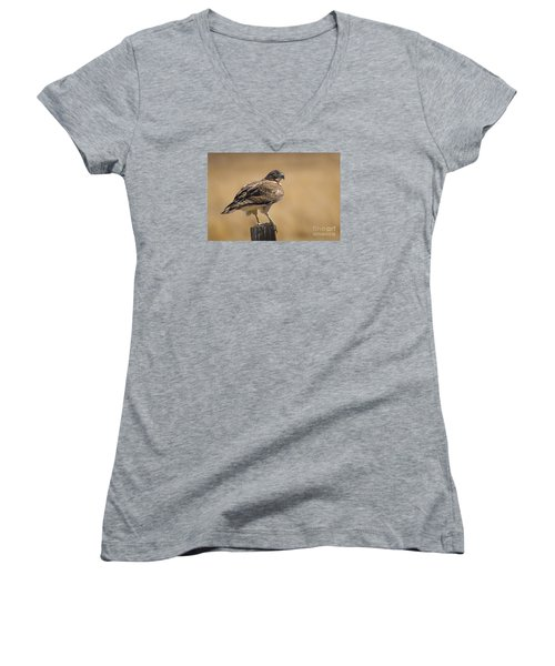 Red Tailed Hawk Watching Women's V-Neck T-Shirt (Junior Cut) by Janis Knight