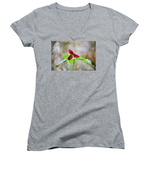 Red Trillium Women's V-Neck T-Shirt (Junior Cut) by David Porteus