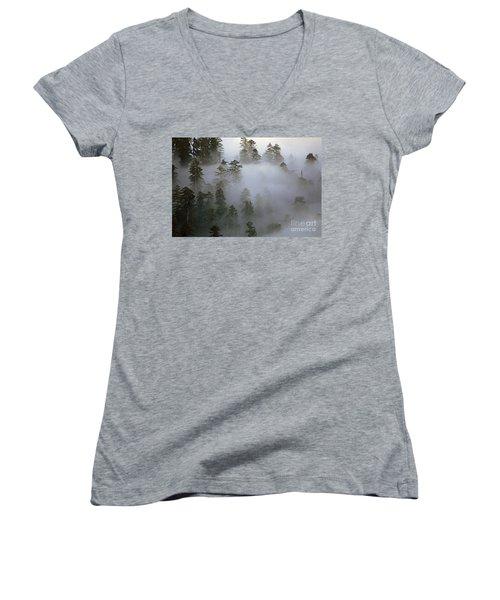 Redwood Creek Overlook With Giant Redwoods  Women's V-Neck T-Shirt
