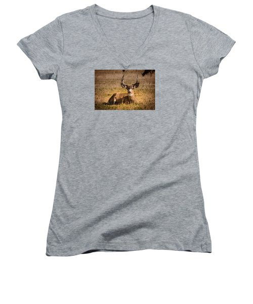 Relaxing Buck Women's V-Neck T-Shirt (Junior Cut) by Janis Knight