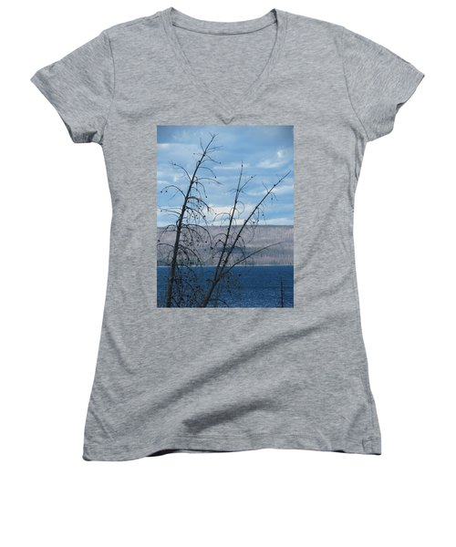 Remnants Of The Fire Women's V-Neck T-Shirt (Junior Cut) by Laurel Powell