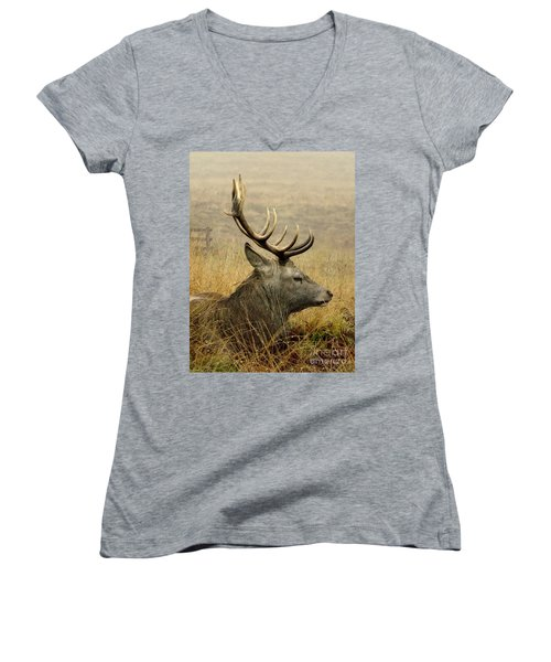 Resting Stag Women's V-Neck (Athletic Fit)