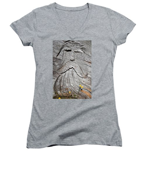 Rip Van Winkle Women's V-Neck (Athletic Fit)