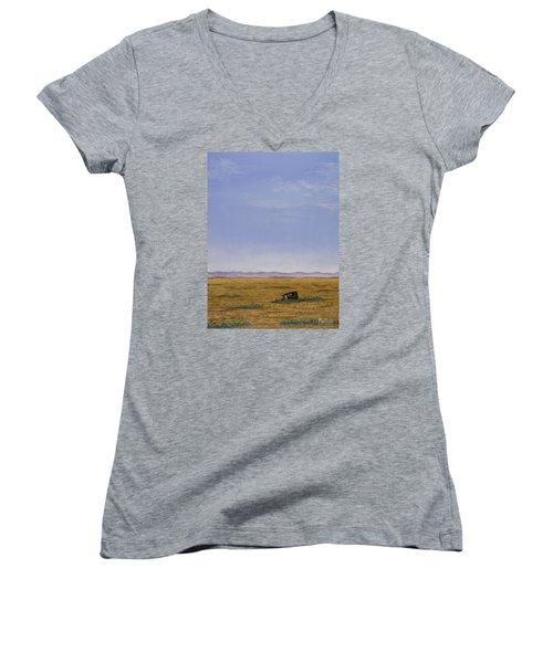 Roadside Attraction Women's V-Neck T-Shirt (Junior Cut) by Jack Malloch