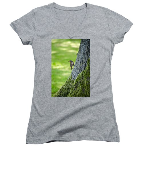 Robin At Rest Women's V-Neck T-Shirt