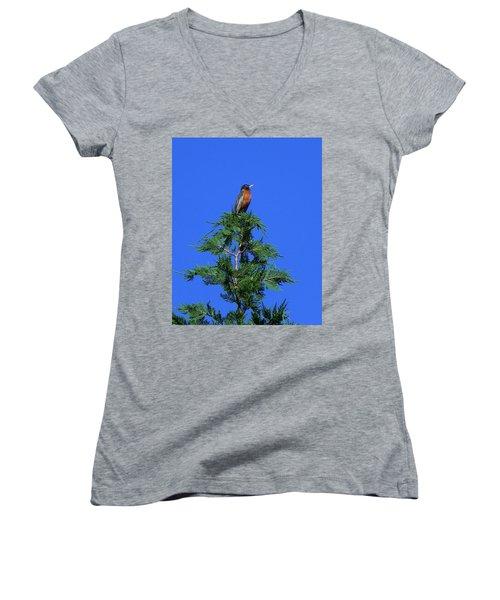Robin Christmas Tree Topper Women's V-Neck T-Shirt