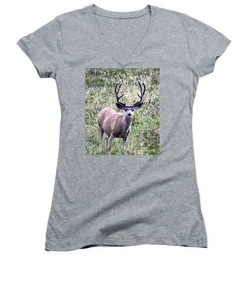 Rocky Mountain Buck Women's V-Neck (Athletic Fit)