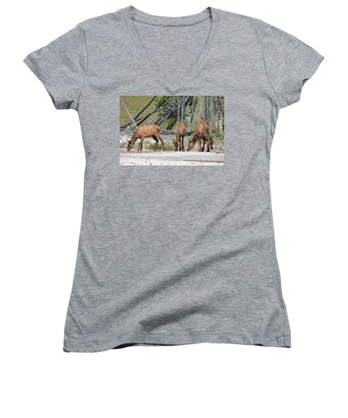 Rocky Mountain Elk Women's V-Neck (Athletic Fit)
