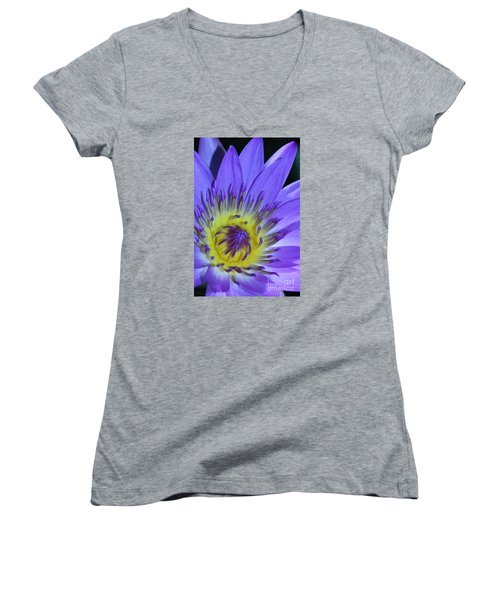 Royal Purple Water Lily #11 Women's V-Neck T-Shirt