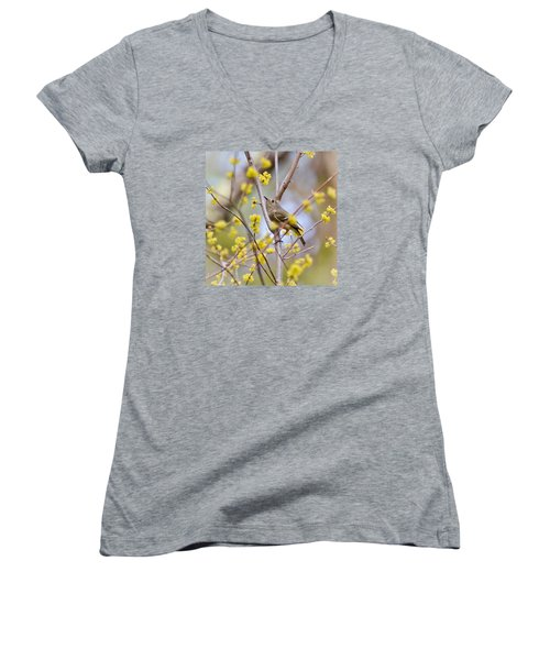 Women's V-Neck T-Shirt (Junior Cut) featuring the photograph Ruby-crowned Kinglet by Kerri Farley