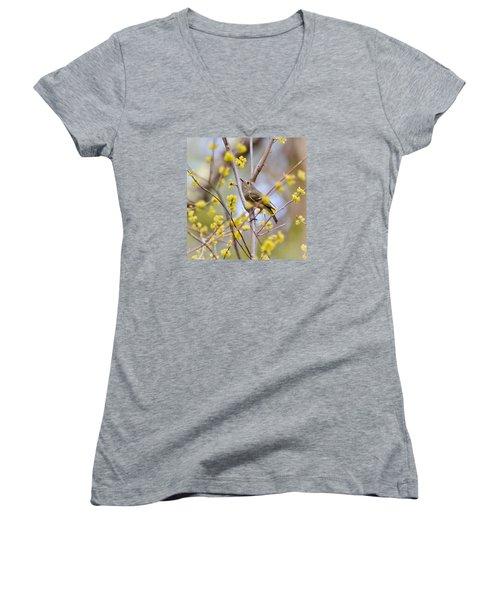 Ruby-crowned Kinglet Women's V-Neck T-Shirt (Junior Cut) by Kerri Farley