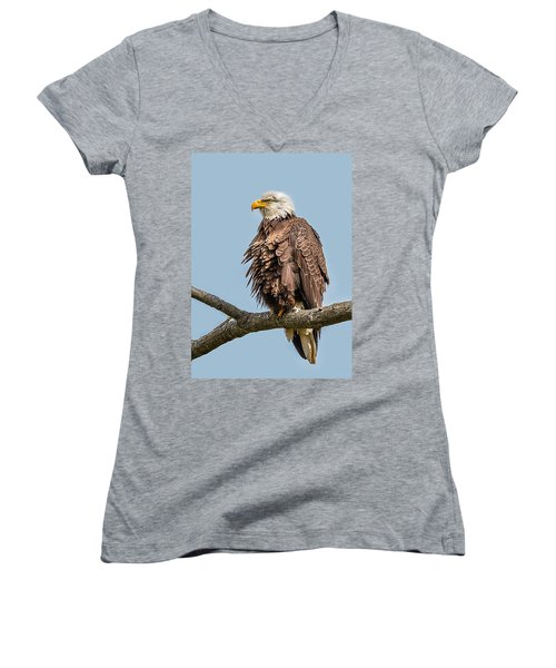 Ruffled Feathers Bald Eagle Women's V-Neck T-Shirt (Junior Cut)