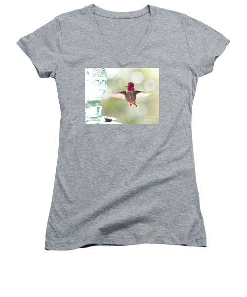 Rufous Hummingbird Women's V-Neck (Athletic Fit)