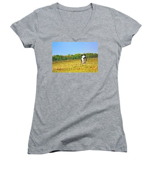 Running Dog Women's V-Neck T-Shirt (Junior Cut) by Daniel Precht
