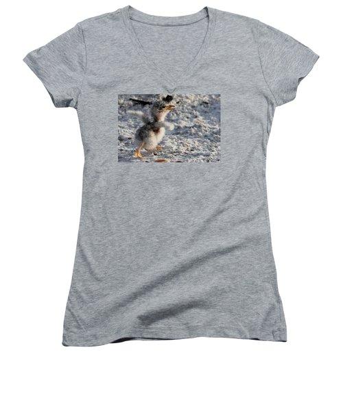 Running Free - Least Tern Women's V-Neck T-Shirt
