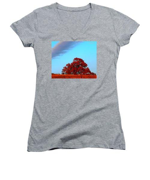 Rural Route Women's V-Neck T-Shirt (Junior Cut) by Chris Berry