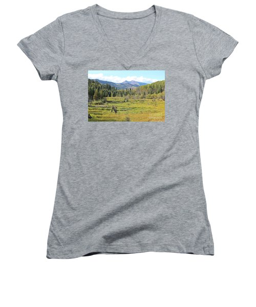 Saddle Mountain Women's V-Neck (Athletic Fit)