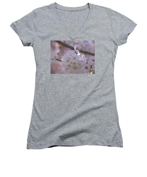 Sakura Women's V-Neck T-Shirt (Junior Cut) by Rachel Mirror