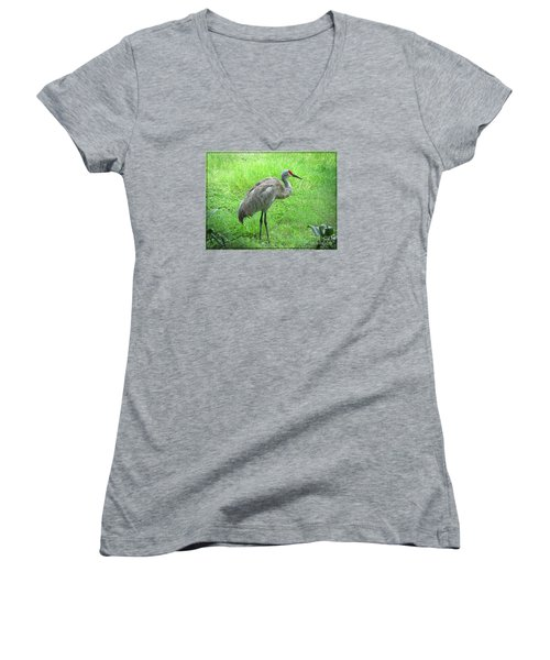 Women's V-Neck T-Shirt (Junior Cut) featuring the photograph Sandhill Crane - Bird Photography by Ella Kaye Dickey