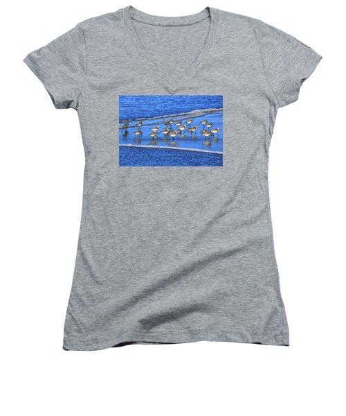 Sandpiper Symmetry Women's V-Neck T-Shirt (Junior Cut) by Robert Bynum