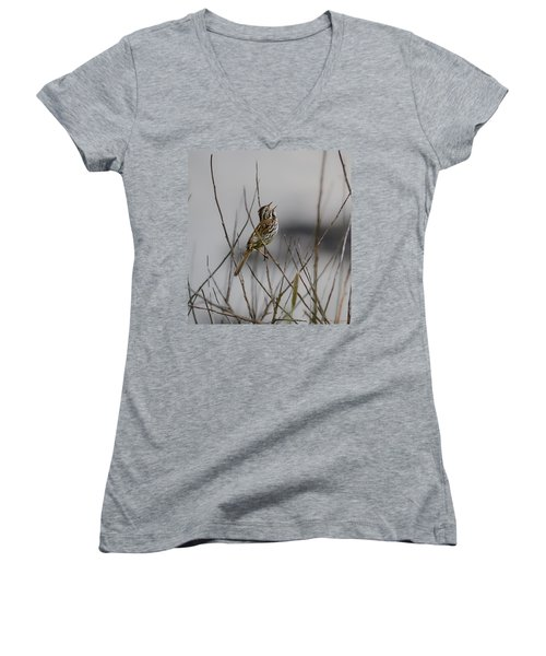 Savannah Sparrow Women's V-Neck (Athletic Fit)